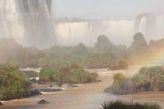 Regnbåge och de Iguassu nedgångarna Royaltyfri Foto