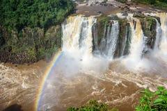 Regnbåge och sikt av att applådera vatten av Iguazu Falls med den omfattande tropiska skogen och att rasa floden i den Iguacu nat Royaltyfri Bild
