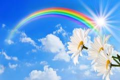 Regnbåge och tusensköna mot himlen vektor illustrationer