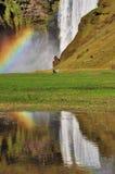 Regnbåge på Skogafoss Island. arkivbilder