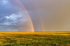 Regnbåge två över vetefält Fotografering för Bildbyråer