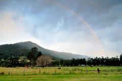 Regnbågebåge över berget av den Gold Coast baklandet Royaltyfri Bild
