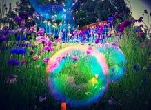 Regnbågebubblor Royaltyfri Foto