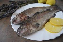 Regnbågeforell med citroner på den vita maträtten Arkivfoton