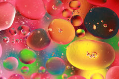 Regnbågen bubblar royaltyfri foto