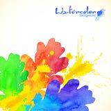Regnbågen färgar vattenfärgen målade eken och plaskar Arkivbild