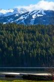 Regnbågen parkerar i Whistler, British Columbia arkivbild