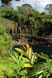 Regnbågenedgångar är en vattenfall som lokaliseras i Hilo, Hawaii Royaltyfri Fotografi
