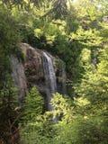 Regnbågenedgångar i Adirondacken parkerar Royaltyfria Bilder