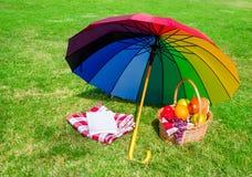 Regnbågeparaply, bok och picknickkorg Arkivbilder