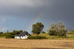 Regnbågeshag Arkivfoto