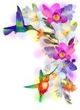 Regnbågesurr-fågel med violetta orchids Arkivfoto