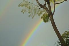 Regnbåge Arkivbilder