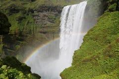 Regnbåge över den Skogafoss vattenfallet i Island Arkivbild