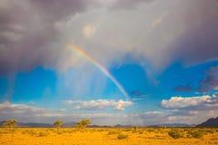 Regnbågen över öknen Arkivbild