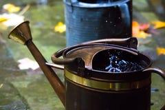 Regndroppar, i att bevattna kan fotografering för bildbyråer