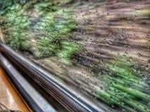 Regndroppar på fönstret royaltyfri foto