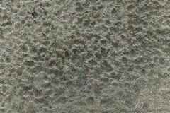 Regndroppespår på sanden Fotografering för Bildbyråer