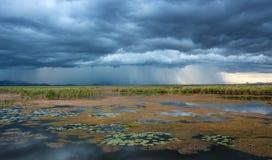 Regnen ankommend lizenzfreies stockfoto