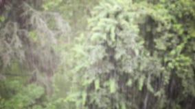 Regnen auf der Stadt stock video footage