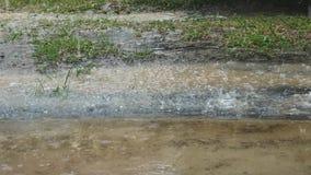 Regnen aus den Grund stock footage