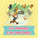 Regnen der Katzen und der Hunde stock abbildung