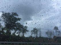 Regnen des Tages Lizenzfreie Stockbilder