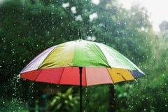 regnen Sie den Tropfen, der auf bunten Regenschirm und Grün fällt Stockfotos