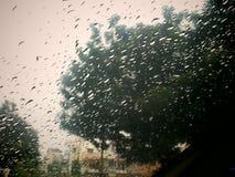 Regnen Sie Tropfen Stockbild