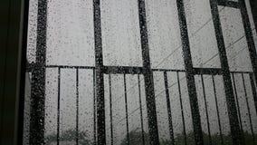 Regnen Sie Tropfen Lizenzfreie Stockfotografie