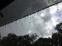 Regnen Sie Tropfen Stockbilder