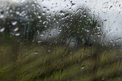 Regnen Sie Tropfen auf Fenster mit grünem Baum des Hintergrundes Stockbild