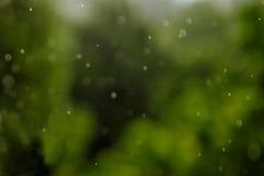 Regnerische Beschaffenheit Bokeh-Lichter und Tropfen des fallenden Regens auf einem grünen Hintergrund Stockbild