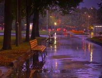 Regnerische Nacht im verlassenen Herbst Park stockfotografie