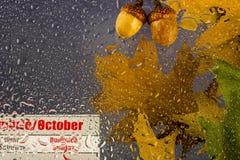 Regnerischer bewölkter Tag des Herbstes mit trockenen Blättern, Wassertropfen auf dem Glas, Eicheln und Oktober-Kalender Lizenzfreie Stockfotografie