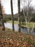 Regnerischer Fluss im Vorfrühling Stockfotos