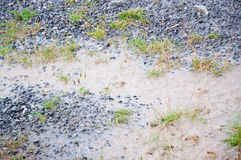 Regnerischer nasser Boden Lizenzfreies Stockbild
