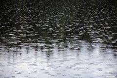 Regnerischer Tag auf Wasseroberfl?che stockbilder