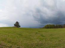 Regnerischer Tag des Frühlinges in den Weiden in der Tschechischen Republik Bewölkter Tag Panoramawiesen Stockbilder