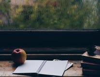Regnerischer Tag am Fenster Lizenzfreies Stockbild