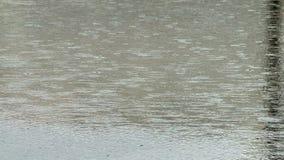 Regnerischer Tag nahe Fluss stock video footage
