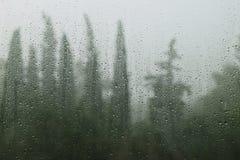 Regnerischer Tagesregentropfen auf Fenster stockfotografie