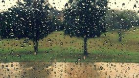 regnig dag Fotografering för Bildbyråer