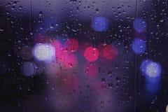 regnig dag för trafikljus Fotografering för Bildbyråer