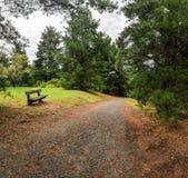 Regnig dag i parkera Wilson australasian Arkivbild