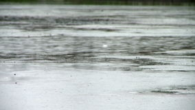 Regnig dag nära flodbanken i sommar arkivfilmer