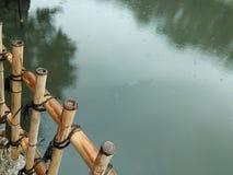 Regnig dag på en sjö Fotografering för Bildbyråer