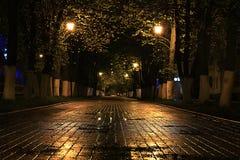 Regnig gata för landskap arkivbild