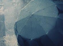 regnig höstdag Fotografering för Bildbyråer