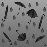 Regnig höstsäsong Royaltyfri Fotografi